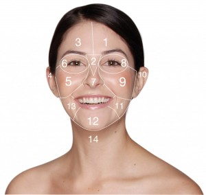 Woman with the 14 zones of Dermalogica Face Mapping Skin Analysis